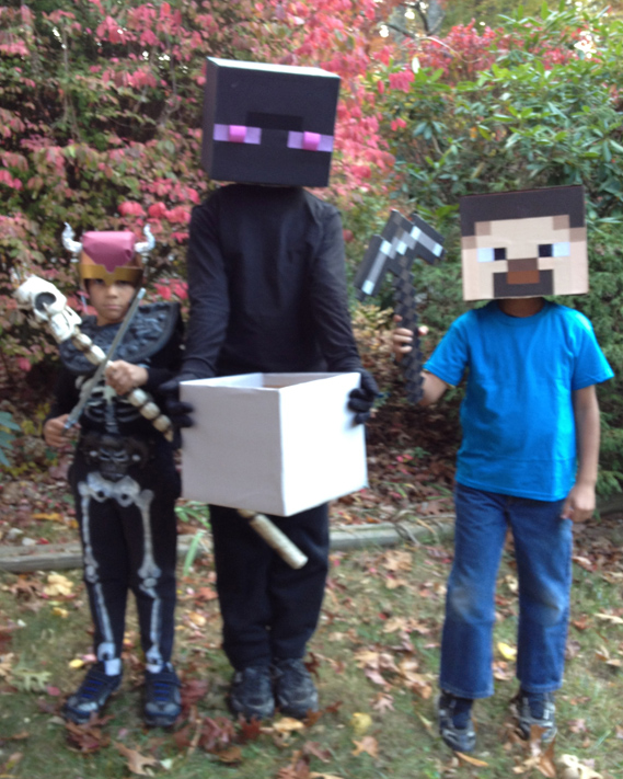 Minecraft Creeper Steve Costume